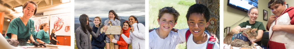 Banner: Students in CSU K-12 programs working, hiking, with animals and making friends